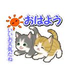 梅雨~夏 もこもこ猫ちゃんズ(個別スタンプ:2)