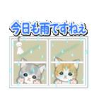 梅雨~夏 もこもこ猫ちゃんズ(個別スタンプ:3)