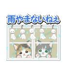 梅雨~夏 もこもこ猫ちゃんズ(個別スタンプ:4)