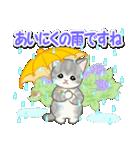 梅雨~夏 もこもこ猫ちゃんズ(個別スタンプ:6)