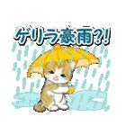 梅雨~夏 もこもこ猫ちゃんズ(個別スタンプ:8)