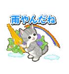 梅雨~夏 もこもこ猫ちゃんズ(個別スタンプ:9)