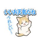 梅雨~夏 もこもこ猫ちゃんズ(個別スタンプ:11)