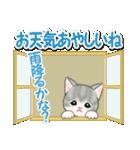 梅雨~夏 もこもこ猫ちゃんズ(個別スタンプ:13)
