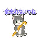 梅雨~夏 もこもこ猫ちゃんズ(個別スタンプ:14)