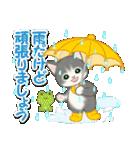 梅雨~夏 もこもこ猫ちゃんズ(個別スタンプ:16)