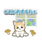 梅雨~夏 もこもこ猫ちゃんズ(個別スタンプ:17)