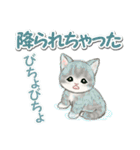 梅雨~夏 もこもこ猫ちゃんズ(個別スタンプ:18)