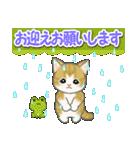 梅雨~夏 もこもこ猫ちゃんズ(個別スタンプ:19)