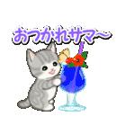 梅雨~夏 もこもこ猫ちゃんズ(個別スタンプ:29)