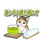 梅雨~夏 もこもこ猫ちゃんズ(個別スタンプ:30)