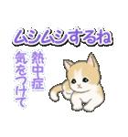 梅雨~夏 もこもこ猫ちゃんズ(個別スタンプ:31)