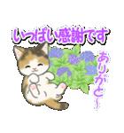梅雨~夏 もこもこ猫ちゃんズ(個別スタンプ:36)