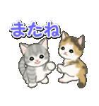 梅雨~夏 もこもこ猫ちゃんズ(個別スタンプ:37)