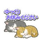 梅雨~夏 もこもこ猫ちゃんズ(個別スタンプ:39)