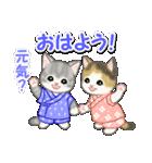 甚平さん猫ちゃんズ(個別スタンプ:1)