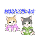 甚平さん猫ちゃんズ(個別スタンプ:2)