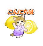 甚平さん猫ちゃんズ(個別スタンプ:3)