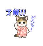甚平さん猫ちゃんズ(個別スタンプ:10)