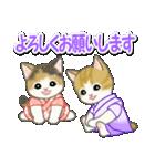 甚平さん猫ちゃんズ(個別スタンプ:14)