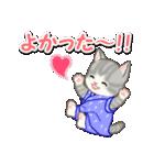 甚平さん猫ちゃんズ(個別スタンプ:15)