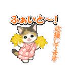 甚平さん猫ちゃんズ(個別スタンプ:17)