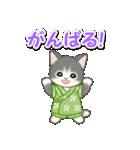 甚平さん猫ちゃんズ(個別スタンプ:18)