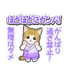 甚平さん猫ちゃんズ(個別スタンプ:19)