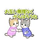 甚平さん猫ちゃんズ(個別スタンプ:20)
