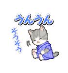 甚平さん猫ちゃんズ(個別スタンプ:23)