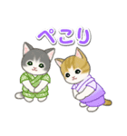 甚平さん猫ちゃんズ(個別スタンプ:26)