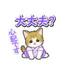 甚平さん猫ちゃんズ(個別スタンプ:30)