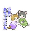 甚平さん猫ちゃんズ(個別スタンプ:31)