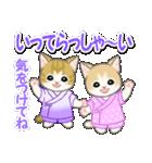 甚平さん猫ちゃんズ(個別スタンプ:33)