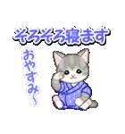 甚平さん猫ちゃんズ(個別スタンプ:37)