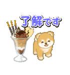 赤ちゃん豆柴と夏スイーツ(個別スタンプ:2)