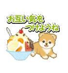 赤ちゃん豆柴と夏スイーツ(個別スタンプ:8)
