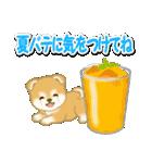 赤ちゃん豆柴と夏スイーツ(個別スタンプ:10)