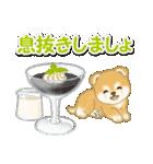 赤ちゃん豆柴と夏スイーツ(個別スタンプ:16)