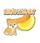 赤ちゃん豆柴と夏スイーツ(個別スタンプ:18)