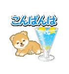 赤ちゃん豆柴と夏スイーツ(個別スタンプ:36)