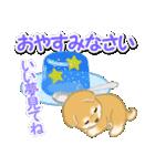 赤ちゃん豆柴と夏スイーツ(個別スタンプ:38)
