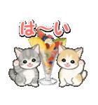 もこもこ猫ちゃんズと夏スイーツ(個別スタンプ:1)