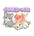 もこもこ猫ちゃんズと夏スイーツ(個別スタンプ:5)