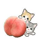 もこもこ猫ちゃんズと夏スイーツ(個別スタンプ:20)