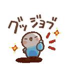 インコちゃん【でか文字】(個別スタンプ:16)