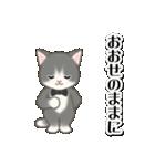 執事猫ちゃん(個別スタンプ:11)