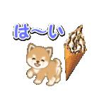 小豆柴の夏(個別スタンプ:13)