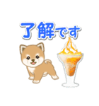 小豆柴の夏(個別スタンプ:14)