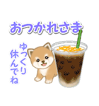 小豆柴の夏(個別スタンプ:18)